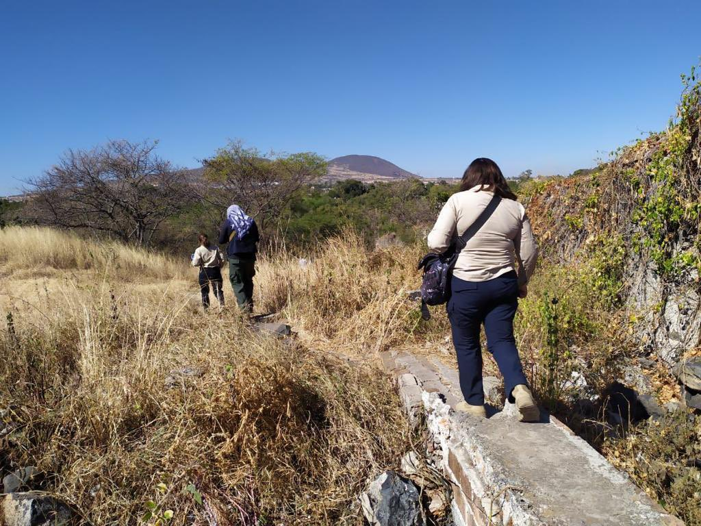 Search for human remains in Guanajuato continues